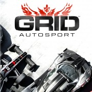 How To Install Grid Autosport Game Without Errors