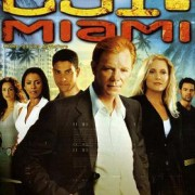 How To Install CSI Miami Game Without Errors