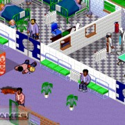 How To Install Theme Hospital Game Without Errors