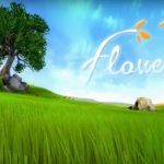 How To Install Flower Without Errors